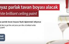 Beyaz parlak tavan boyası alacak