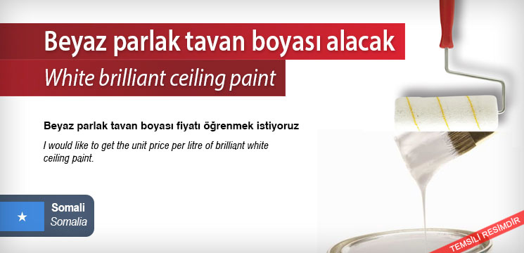 White-brilliant-ceiling-paint