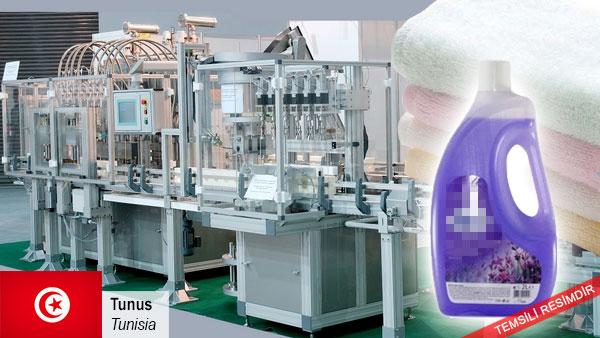 Liquid-detergent