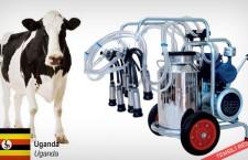 Süt sağma makineleri almak istiyor