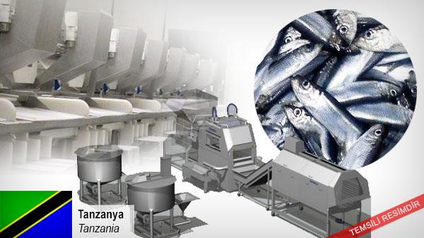 Fish-processing-equipments