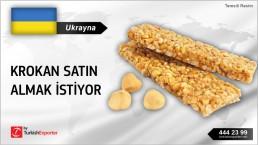 Ukrayna, Krokan satın almak istiyor