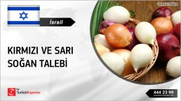 RED AND YELLOW ONION IMPORT INQUIRY FROM ISRAEL
