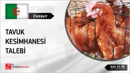 CHICKEN SLAUGHTERHOUSE COMPLETE OFFER REQUEST FROM ALGERIA