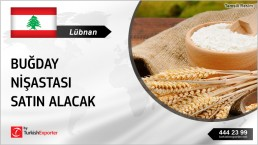 WHEAT STARCH IMPORT INQUIRY FROM LEBANON