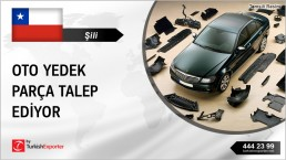 AUTO BODY PARTS SUPPLY TO CHILE FROM TURKEY