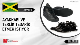 Leather Fashion Sneakers Shoes Buy Inquiry from Jamaica