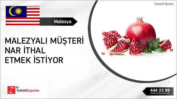 2403-Malezya-Nar