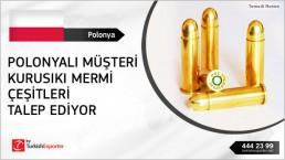 Blank Training Ammunition buying inquiry from Poland