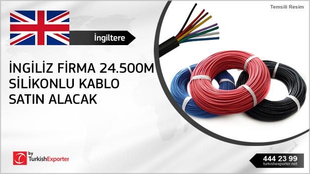 2503_İngiltere-Kablo