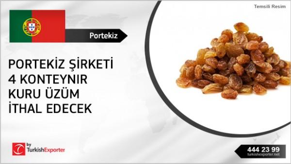 Turkish Raisin Dried Grapes