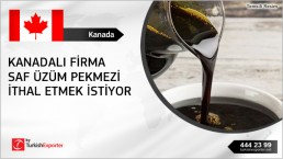 Good quality grape syrup/molasses