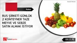 Fresh fruit importing