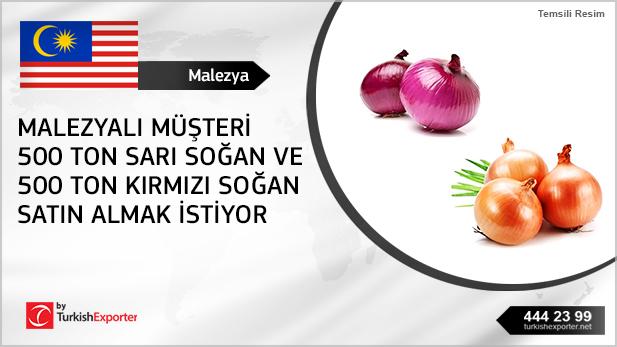 2561_Malezya-Soğan
