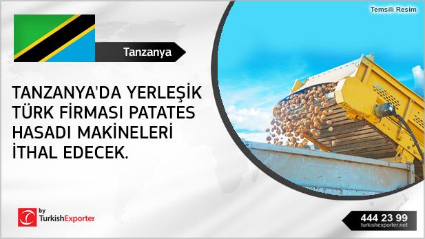 2593-Tanzanya-Patates,