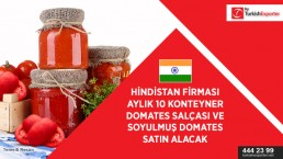 India importing – tomato paste and peeled tomatoes in bulk