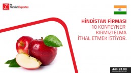 I am looking for red delicious apples ,quantity 10 container ,port of delievery will be Nhava sheva in india.