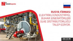 Electric Steam Generators to import to Russia